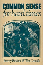 Common Sense for Hard Times book cover