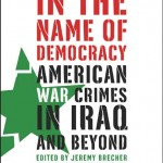 In the name of democracy book cover